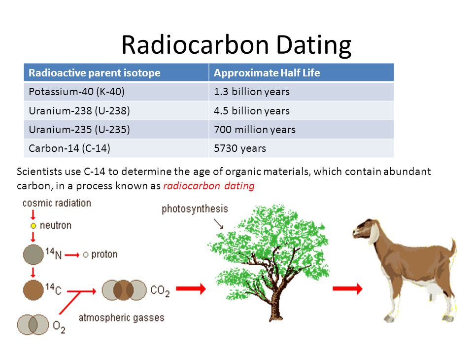 Radiocarbon Dating Radioactive parent isotope Approximate Half Life
