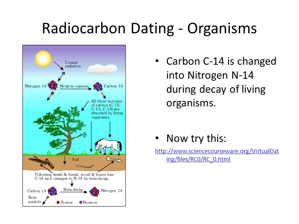 Radiocarbon dating på hindi
