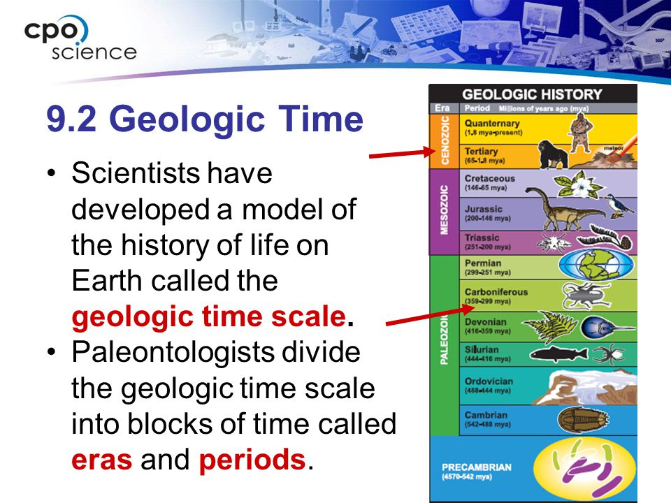 9.2 Geologic Time Scientists have developed a model of the history of life on Earth called the geologic time scale.