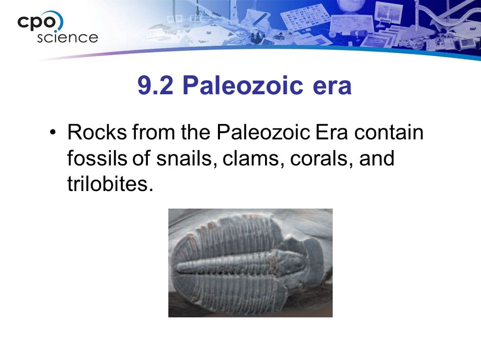 9.2 Paleozoic era Rocks from the Paleozoic Era contain fossils of snails, clams, corals, and trilobites.
