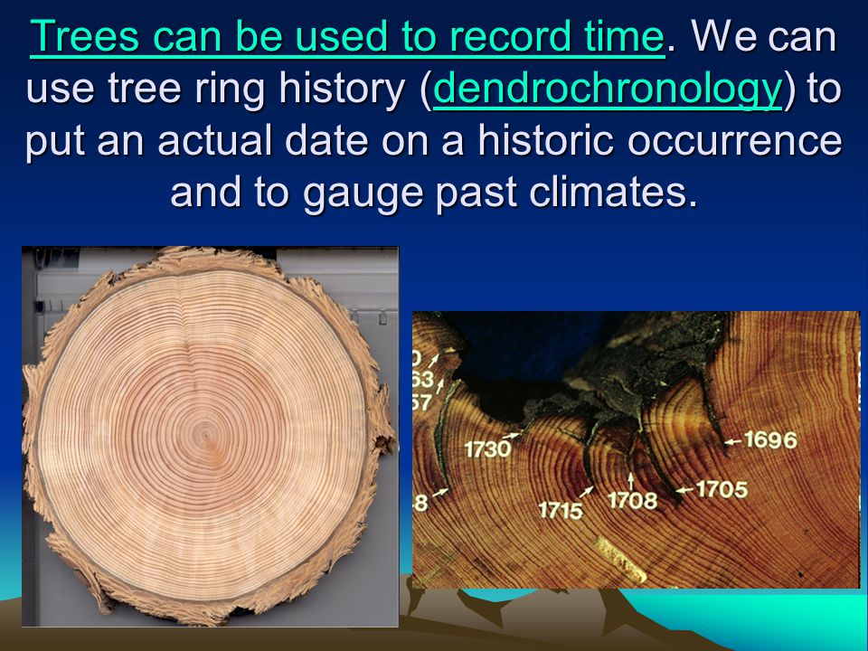 Trees can be used to record time