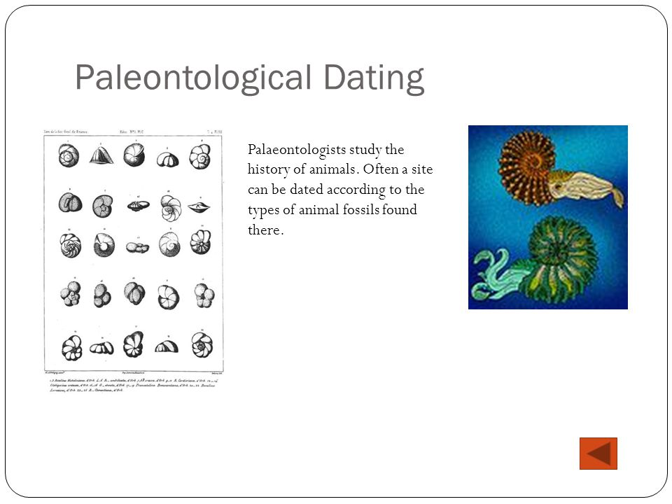 Palaeontological dating site