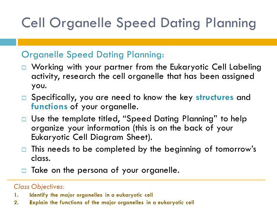speed dating biology definition