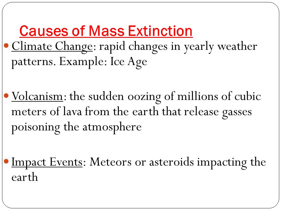 Causes of Mass Extinction