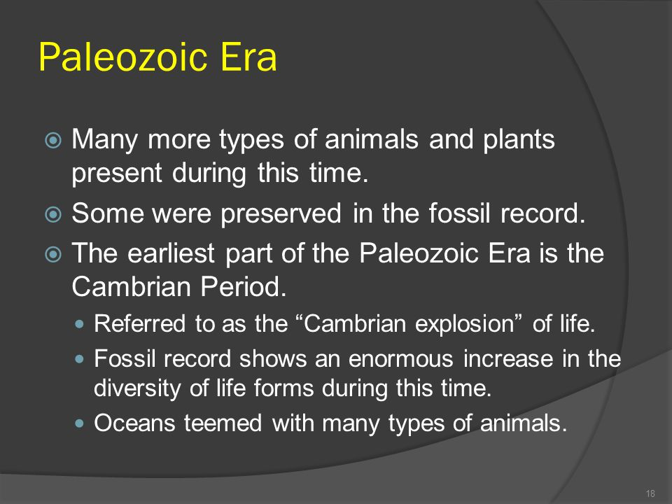 Paleozoic Era Many more types of animals and plants present during this time. Some were preserved in the fossil record.