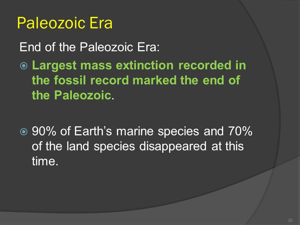 Paleozoic Era End of the Paleozoic Era: