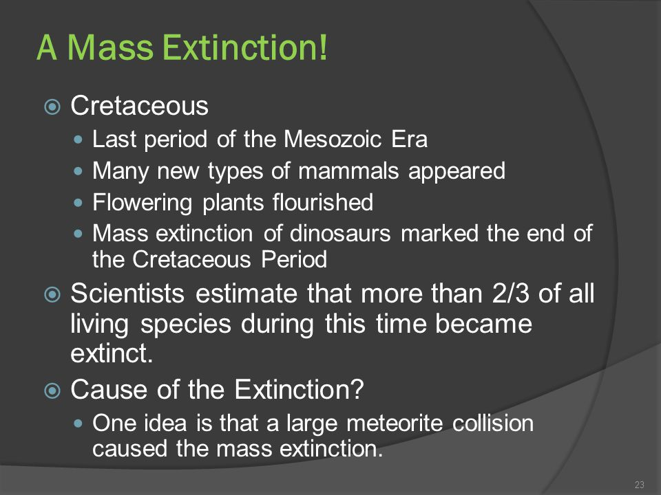 A Mass Extinction! Cretaceous