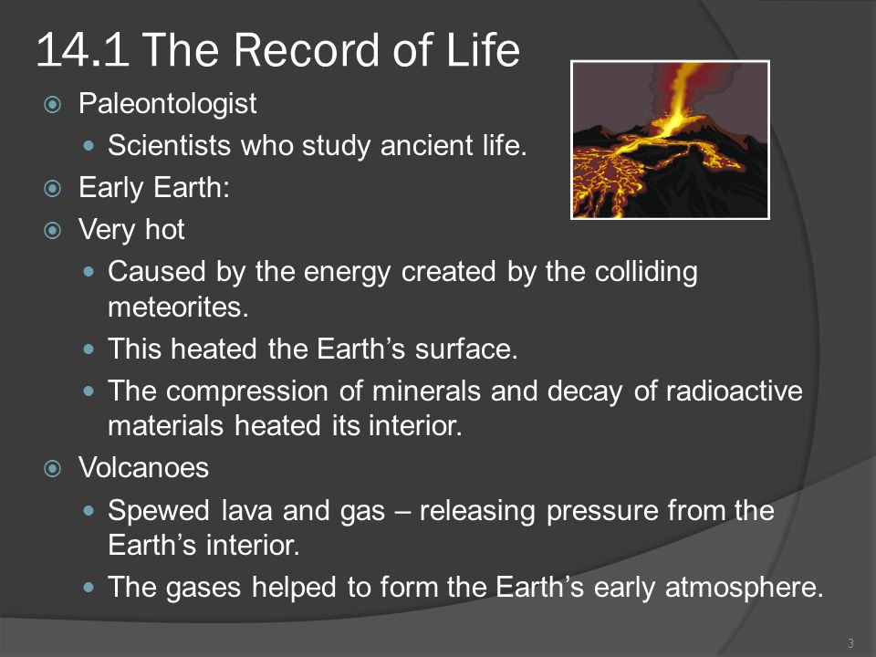 14.1 The Record of Life Paleontologist