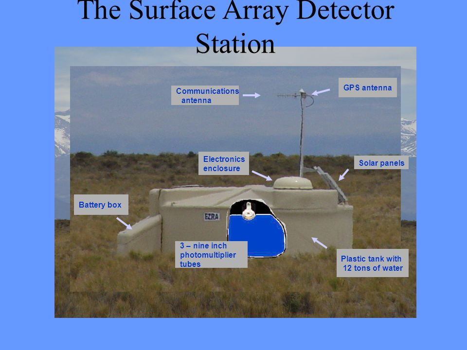 The Surface Array Detector Station