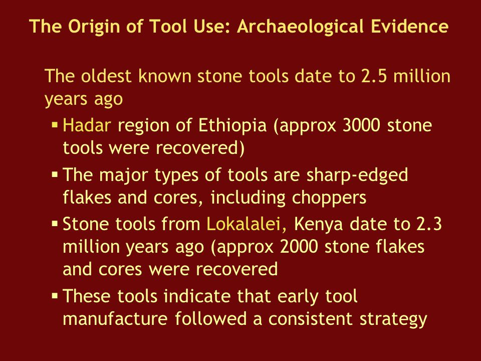 The Origin of Tool Use: Archaeological Evidence