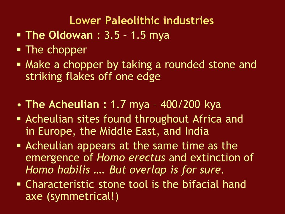 Lower Paleolithic industries