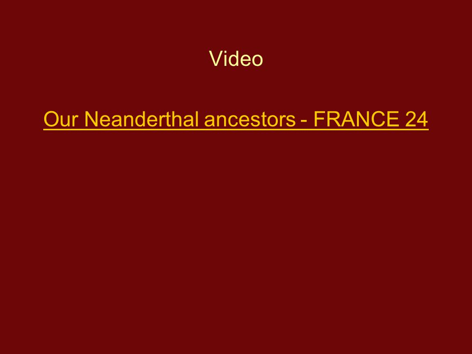 Our Neanderthal ancestors - FRANCE 24