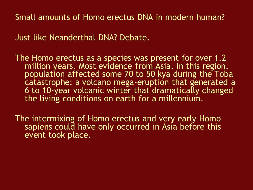Small amounts of Homo erectus DNA in modern human
