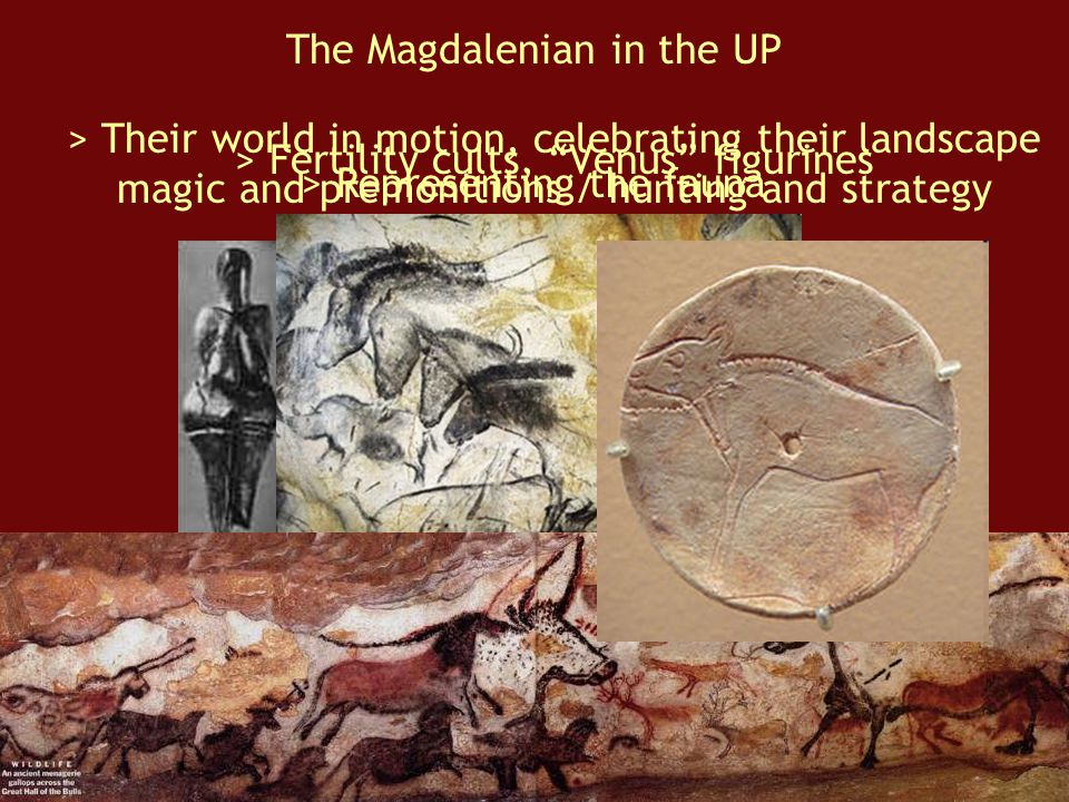 The Magdalenian in the UP > Fertility cults, Venus figurines