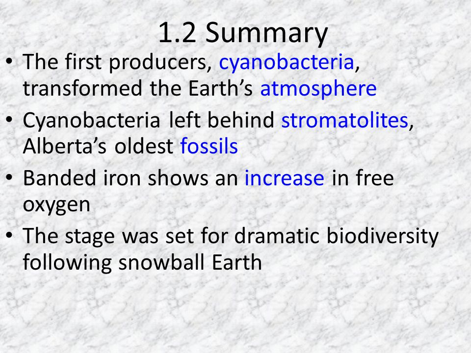 1.2 Summary The first producers, cyanobacteria, transformed the Earth's atmosphere.
