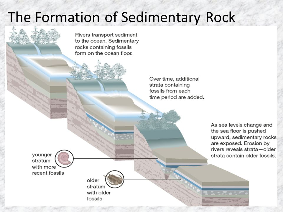 The Formation of Sedimentary Rock