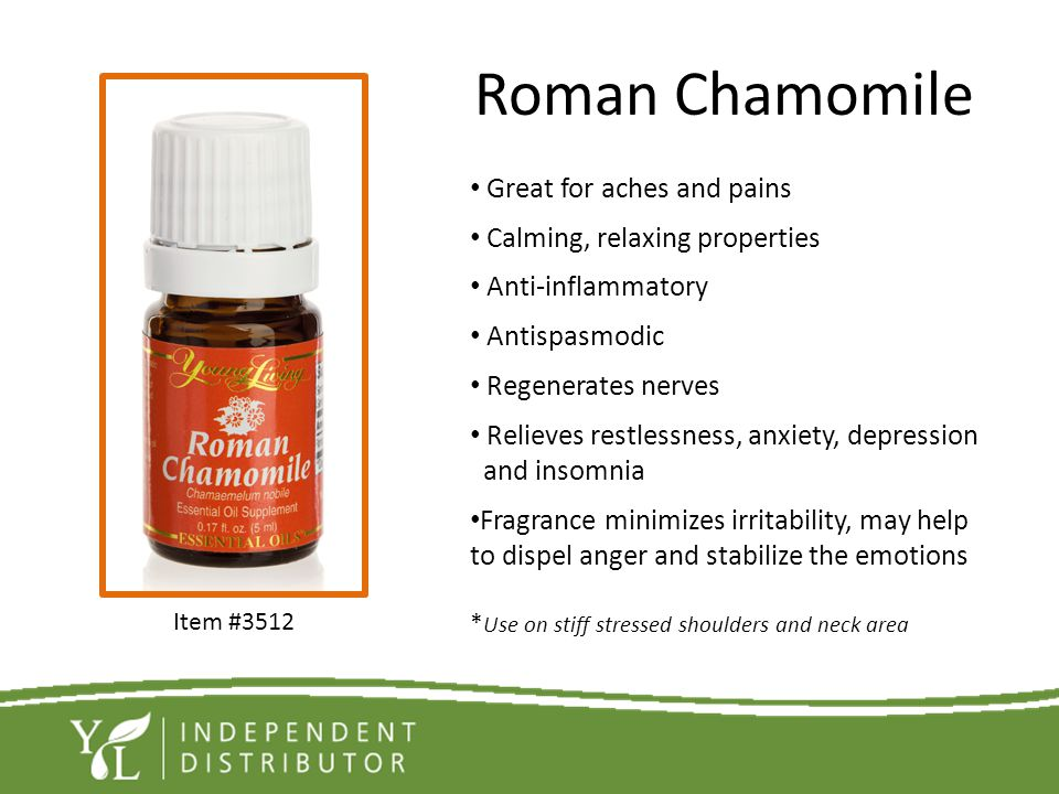 Roman Chamomile Great for aches and pains Calming, relaxing properties
