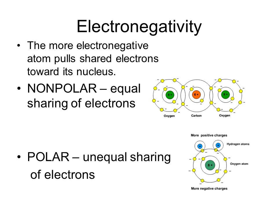 Electronegativity NONPOLAR – equal sharing of electrons