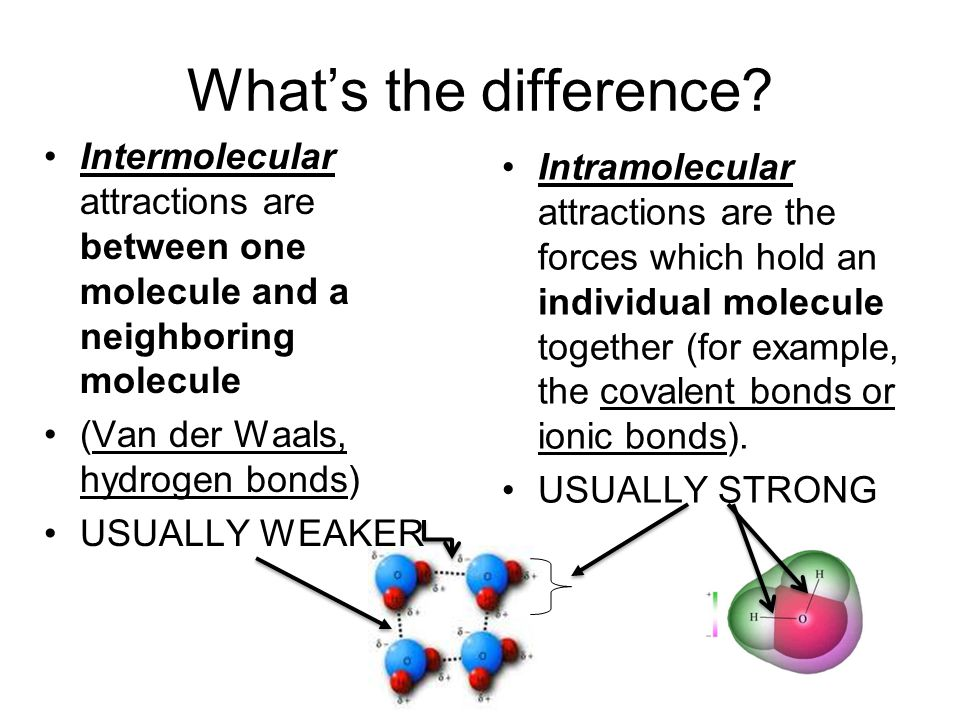 What's the difference Intermolecular attractions are between one molecule and a neighboring molecule.