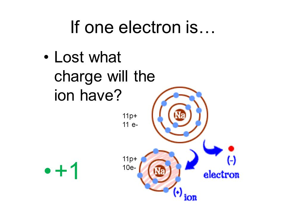 +1 If one electron is… Lost what charge will the ion have 11p+ 11 e-