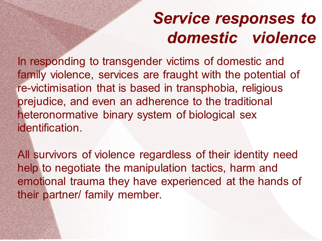 Service responses to domestic violence
