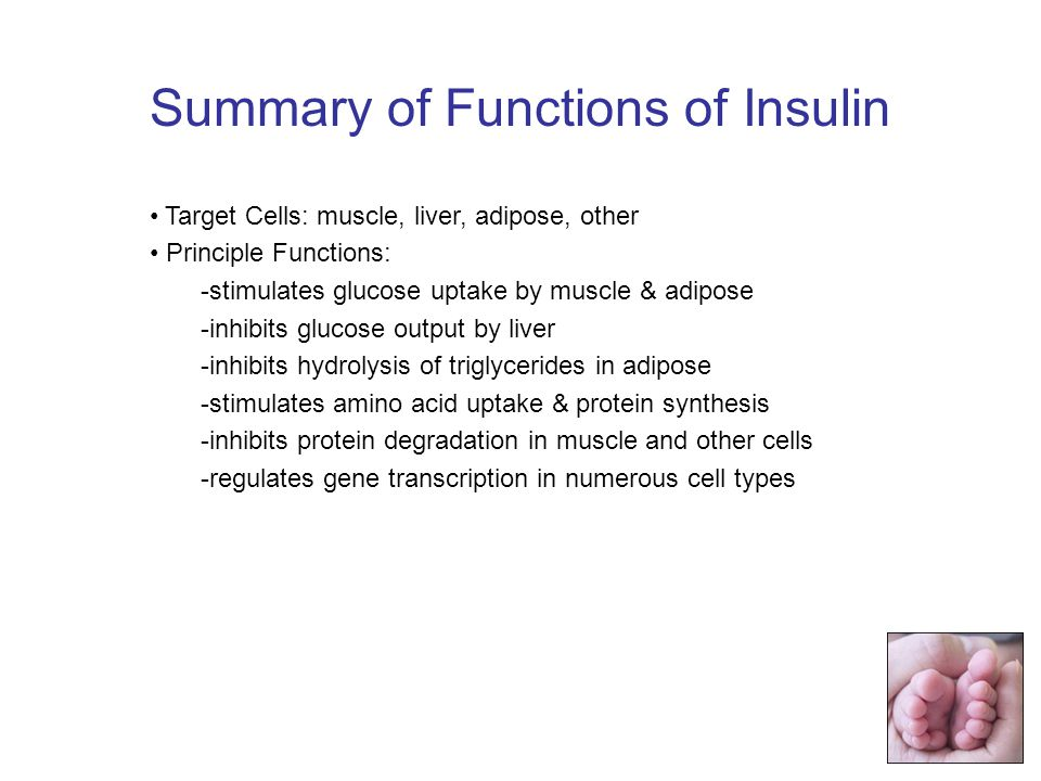 Summary of Functions of Insulin