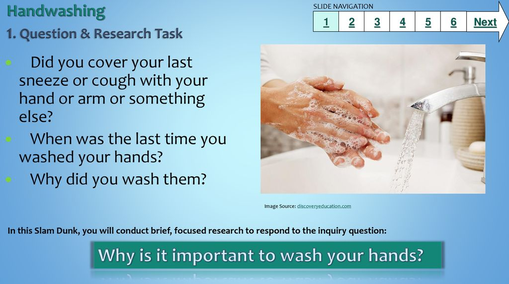 Handwashing 1  Question & Research Task - ppt download