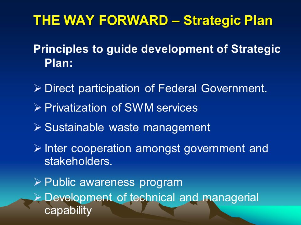 THE WAY FORWARD – Strategic Plan