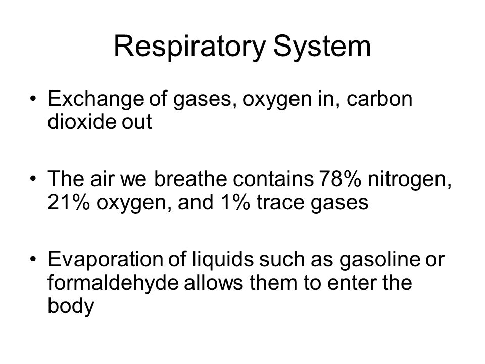 Respiratory System Exchange of gases, oxygen in, carbon dioxide out