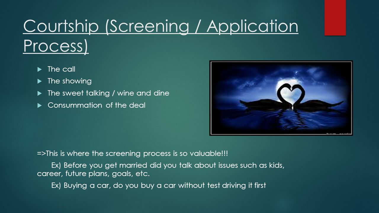 Courtship (Screening / Application Process)
