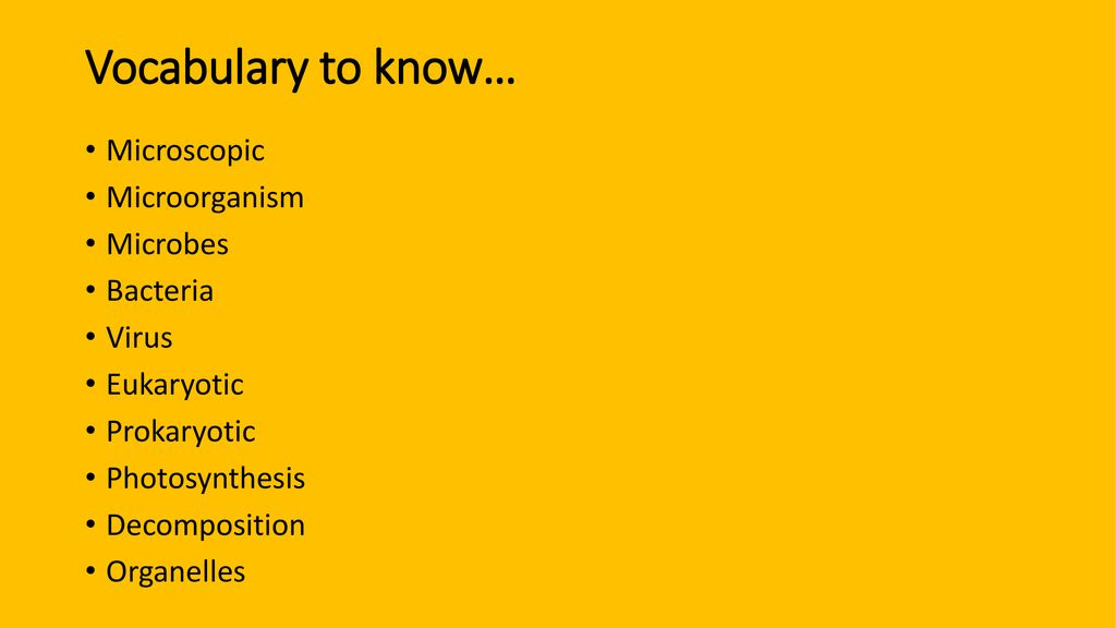 Microbiology Quiz #1 Review - ppt download
