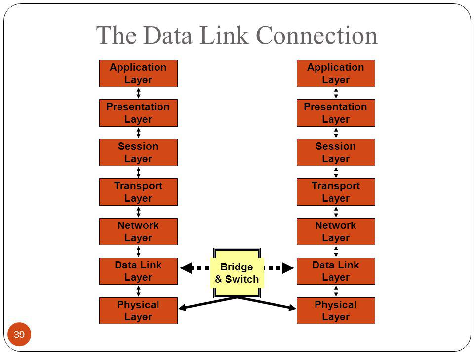 The Data Link Connection