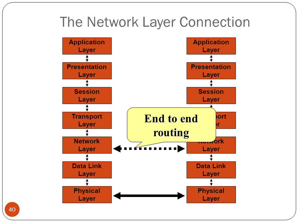 The Network Layer Connection