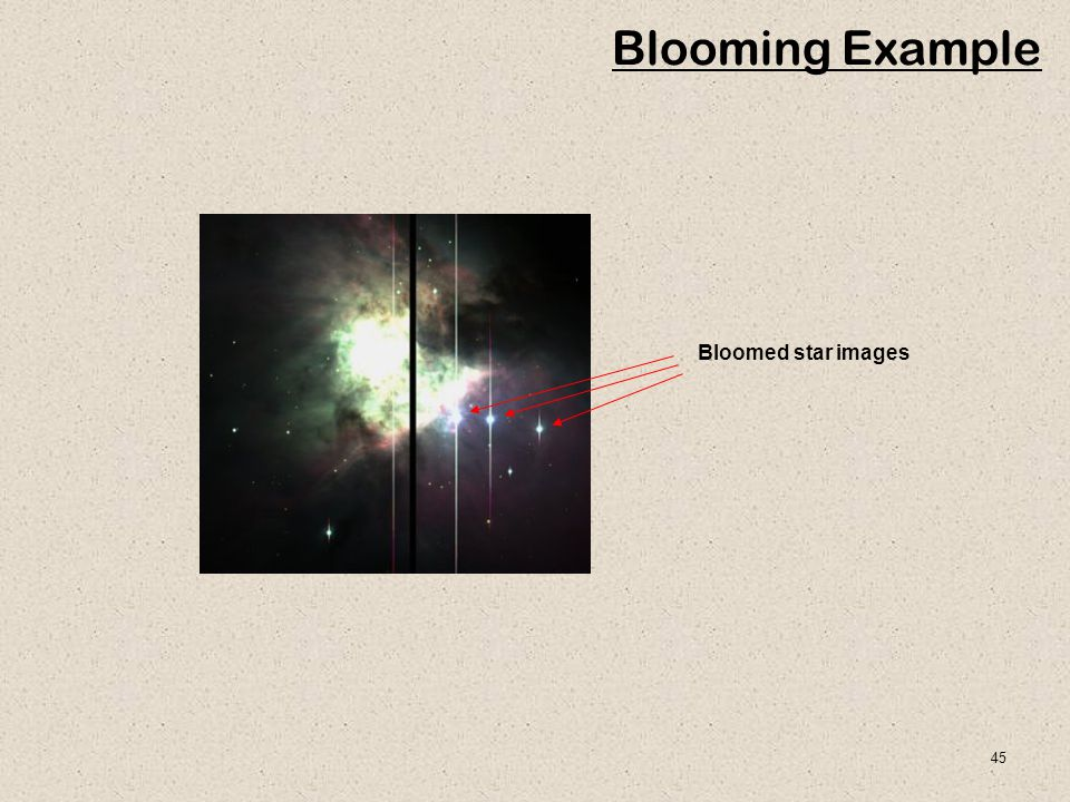 Blooming Example Bloomed star images