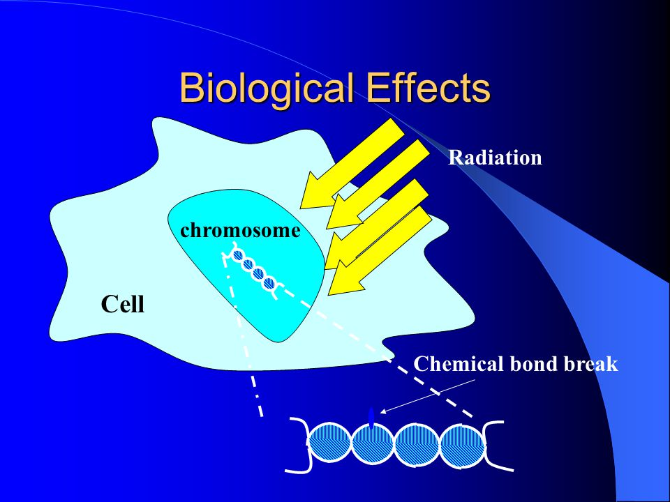 Biological Effects Radiation chromosome Cell Chemical bond break