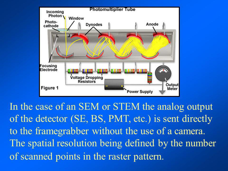 In the case of an SEM or STEM the analog output of the detector (SE, BS, PMT, etc.) is sent directly to the framegrabber without the use of a camera.