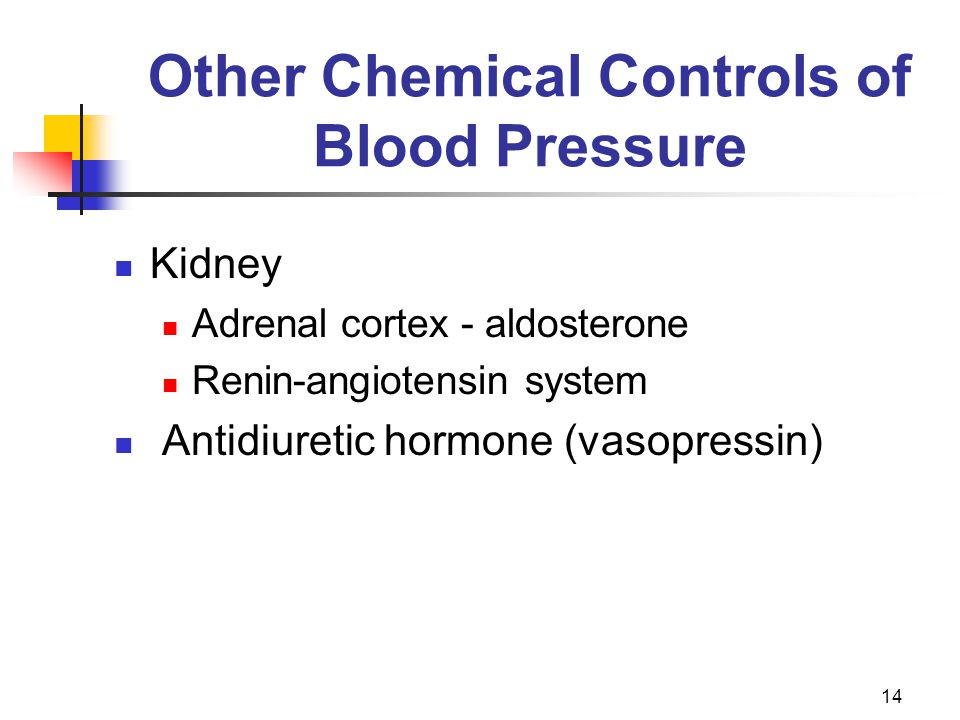 Other Chemical Controls of Blood Pressure