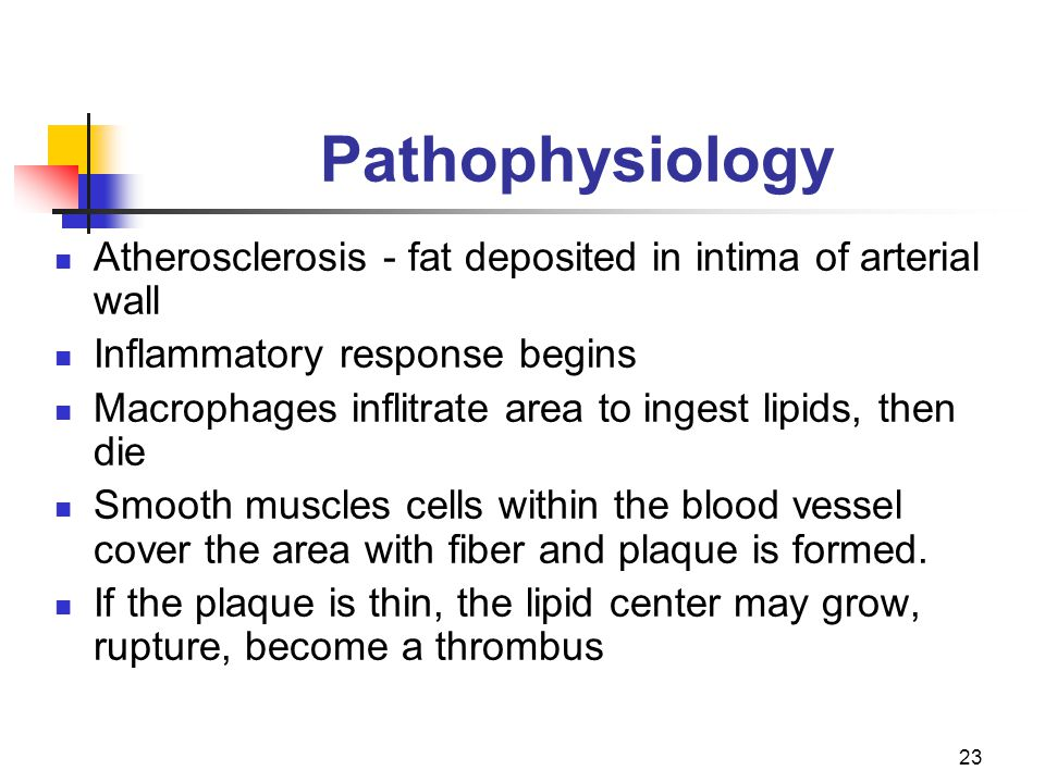 Pathophysiology Atherosclerosis - fat deposited in intima of arterial wall. Inflammatory response begins.