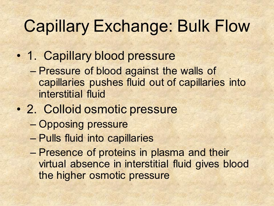 Capillary Exchange: Bulk Flow
