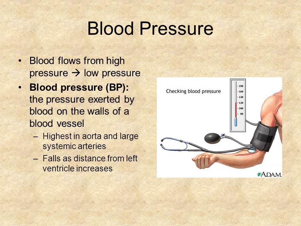 Blood Pressure Blood flows from high pressure  low pressure