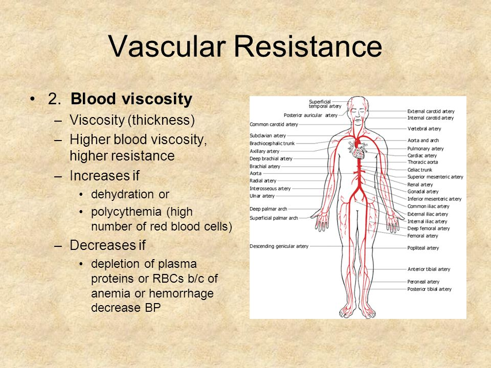 Vascular Resistance 2. Blood viscosity Viscosity (thickness)