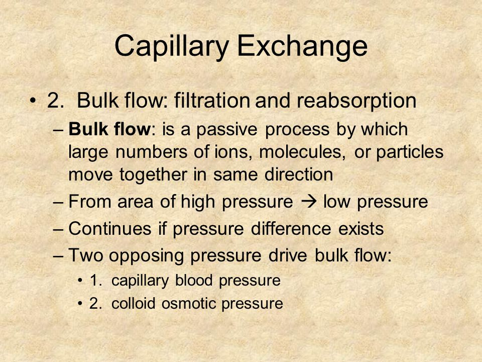 Capillary Exchange 2. Bulk flow: filtration and reabsorption