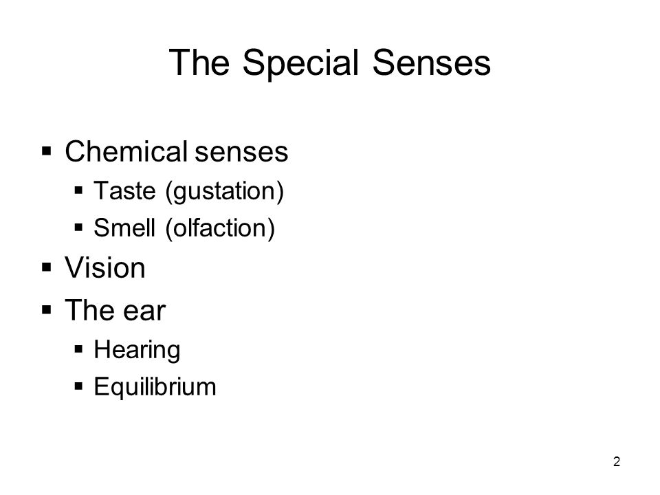 The Special Senses Chemical senses Vision The ear Taste (gustation)