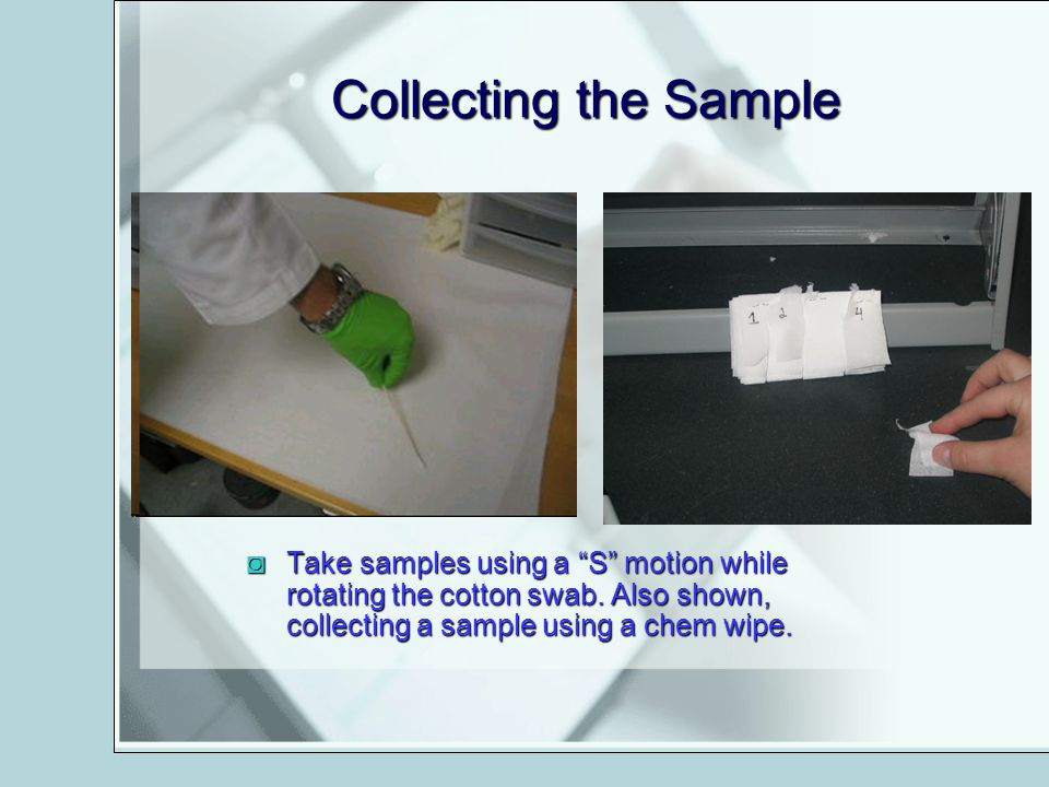 Collecting the Sample Take samples using a S motion while rotating the cotton swab.