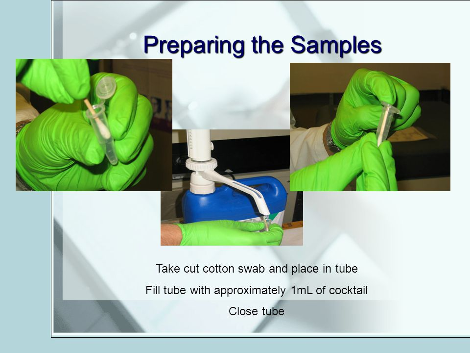 Preparing the Samples Take cut cotton swab and place in tube