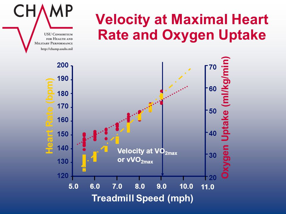 Velocity at Maximal Heart Rate and Oxygen Uptake