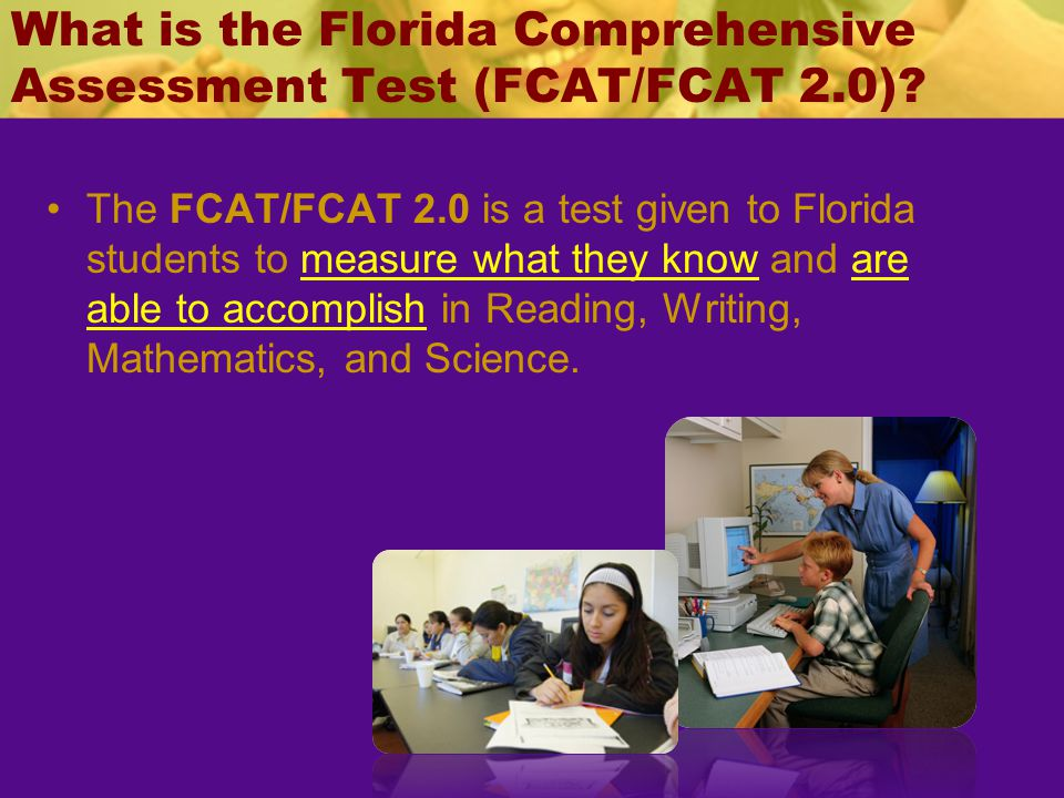 What is the Florida Comprehensive Assessment Test (FCAT/FCAT 2.0)