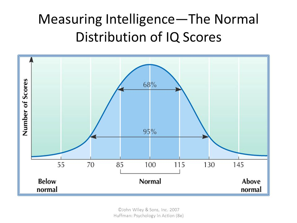 Iq results score adults