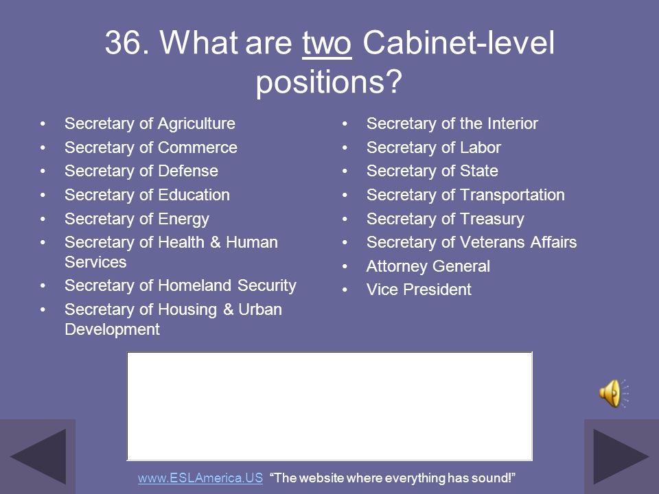 36. What are two Cabinet-level positions