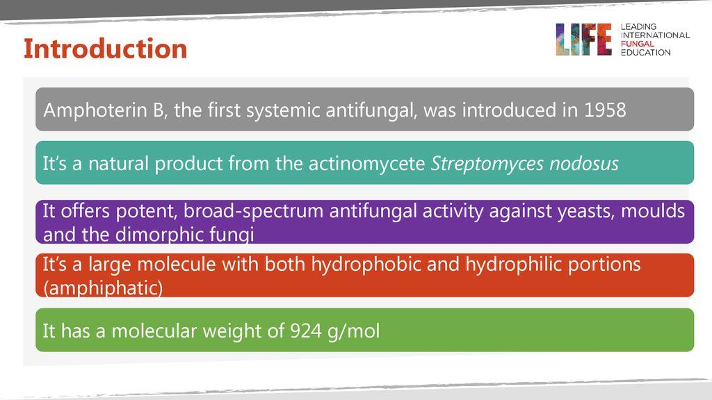 Amphotericin B Dr Pippa Newton, Infectious Diseases